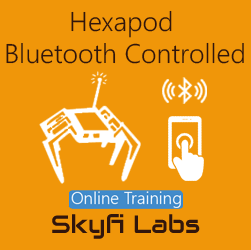 Hexapod: Bluetooth Controlled - Online Project based Course
