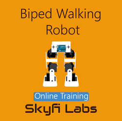 Biped Walking Robot Online Project-based Course