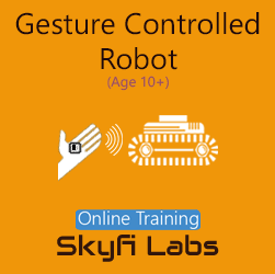 Gesture Robot for School Students Online Project Based Course